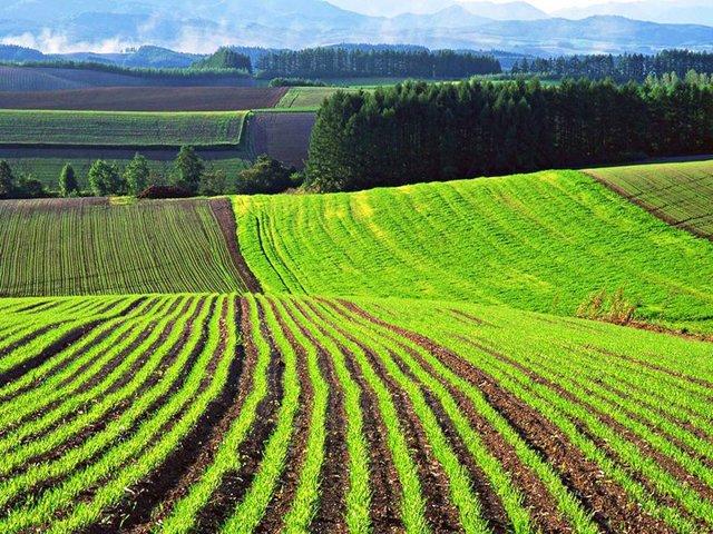 Что такое правила застройки и землепользования в 2020 году