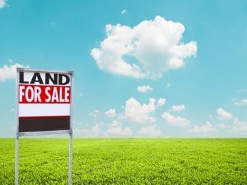 Можно ли сделать бесплатное межевание земельного участка в 2020 году
