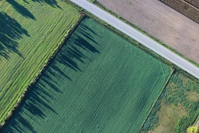 Обременение земельного участка в 2020 году и их виды