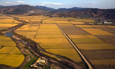 Земли рекреационного назначения и их использование в 2020 году