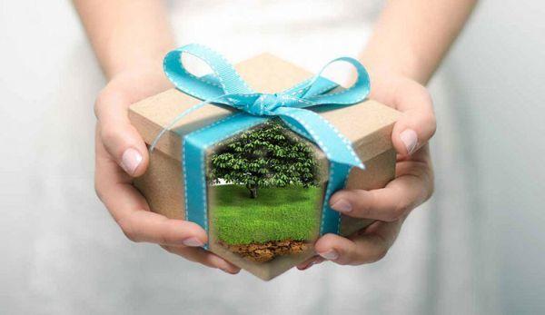 Как оформляется дарственная на земельный участок