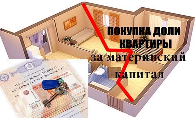 Как выкупить долю в квартире под материнский капитал