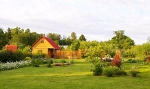 Общая долевая собственность на земельный участок: как выделить и продать свою долю